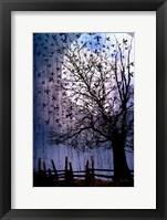 Framed Bird Swarm