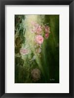 Framed Evening Light on Roses II