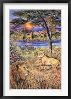 Framed African Sun