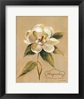 Framed December Magnolia Vintage