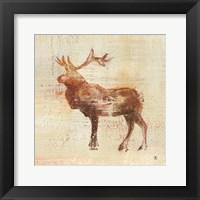 Framed Elk Study