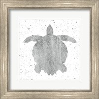 Framed Silver Sea Life Turtle