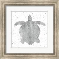 Framed Silver Sea Life Turtle