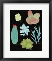 Framed Succulent Chart II
