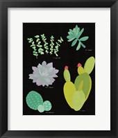 Framed Succulent Chart III