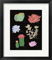 Framed Succulent Chart V