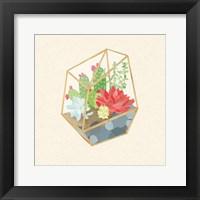 Framed Succulent Terrarium IV