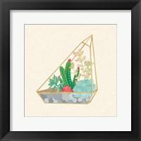 Framed Succulent Terrarium V