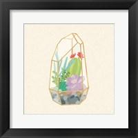 Framed Succulent Terrarium VI