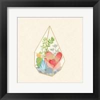 Framed Succulent Terrarium VII