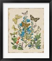 Framed Butterfly Bouquet II Linen