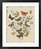 Framed Butterfly Bouquet I Linen