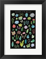 Framed Succulent Chart I of the Americas