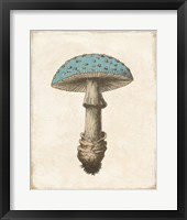 Framed Funghi Velenosi Blue Green