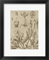 Framed Rhododendrons