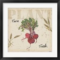 Framed Farmers Feast IV