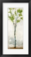 Framed Watercolor Birch Trees I