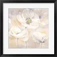 Framed White Poppies I