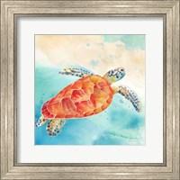 Framed Sea Splash Sea Turtle
