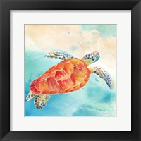 Framed Sea Splash Sea Turtle