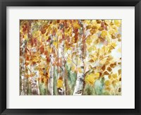 Framed Watercolor Fall Aspens