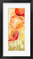 Framed Watercolor Poppy  Meadow Spice Panel II