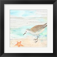 Framed Sandpiper Beach II