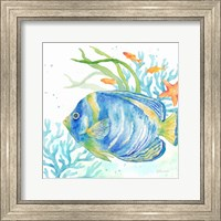 Framed Sea Life Serenade I