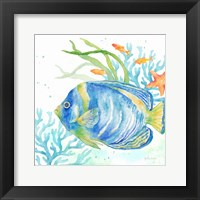 Framed Sea Life Serenade I