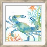 Framed Sea Life Serenade II