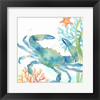 Framed Sea Life Serenade II