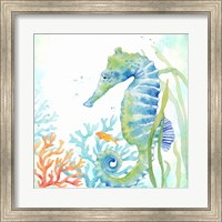 Framed Sea Life Serenade III