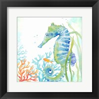 Sea Life Serenade III Framed Print