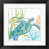 Sea Life Serenade IV Framed Print