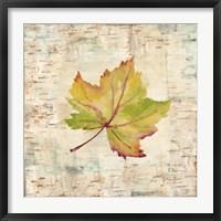 Framed Nature Walk Leaves III