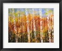Framed Autumn View