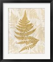 Framed Golden Fern I