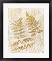 Framed Golden Fern II
