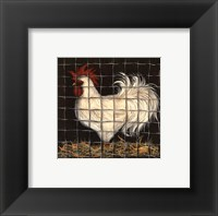 Framed White Rooster