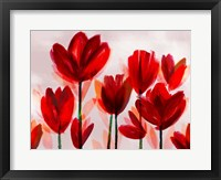 Framed Contemporary Poppies Red