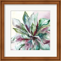 Framed Succulent Watercolor II