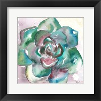 Framed Succulent Watercolor IV