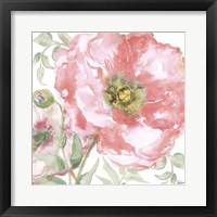 Framed Poppy Romance II