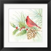Framed Winter Birds IV Cardinal