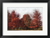 Framed Fall Reds