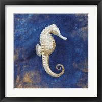 Framed Treasures from the Sea Indigo I