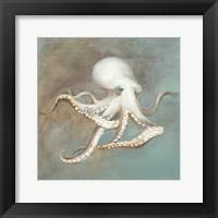 Framed Treasures from the Sea V