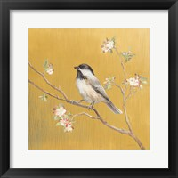 Framed Black Capped Chickadee on Gold