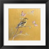 Framed Female Goldfinch on Gold