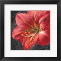 Framed Vivid Floral III Crop